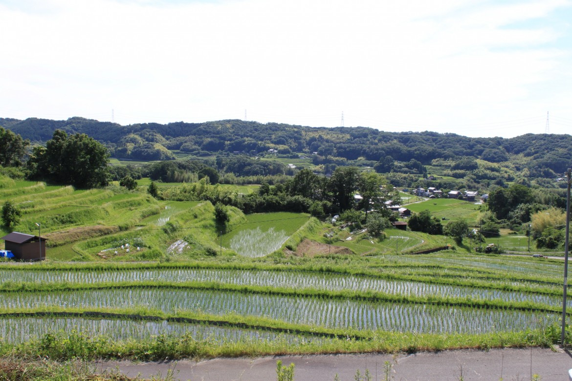 Sake of Nado Gogo : one of the leading sake-making regions-2