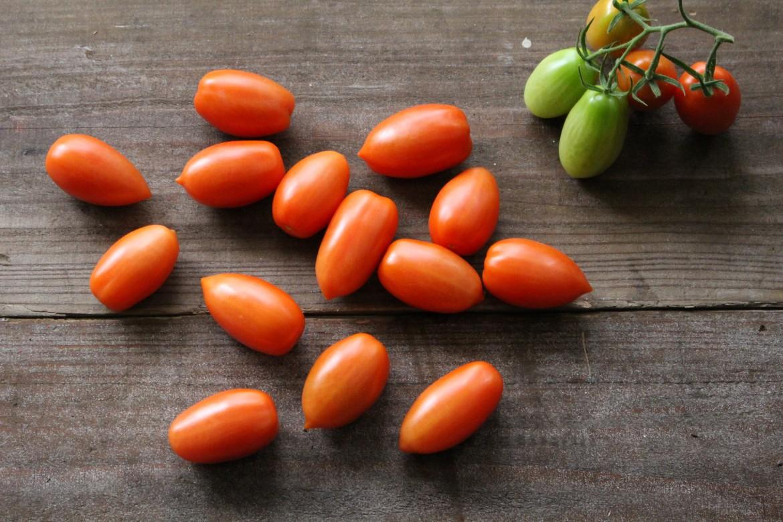 煮込みトマト サンマルツアーノリゼルバ-1