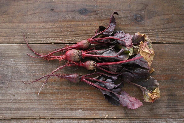 Eat it raw, Organic Radish-1
