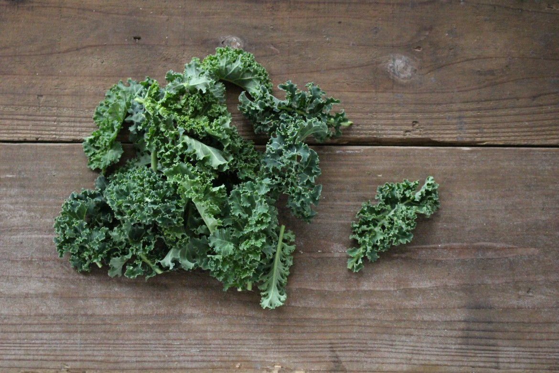 Curly Kale, best sautéed-1