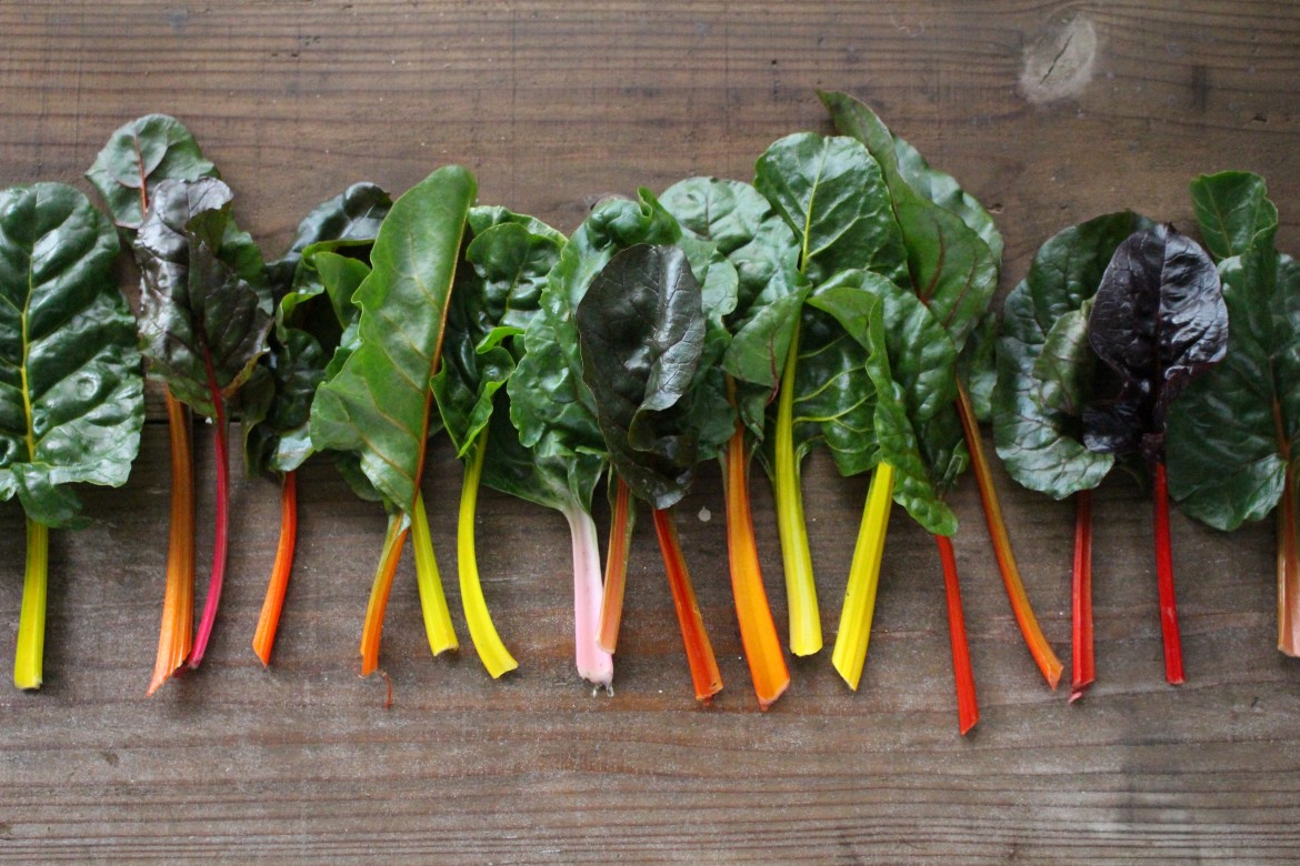 Red and Green Organic Swiss Chard