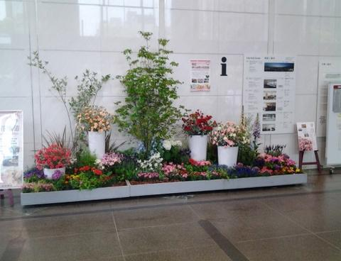 神戸の花で神戸の街を飾る「街の彩ガーデン」!!平成29年度 第1回目の展示が始まります!