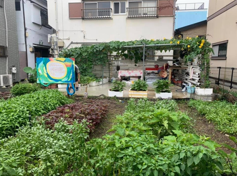 【募集終了】まちの中で野菜を育てる。神戸のアーバンファーム ツアーを開催します。-4