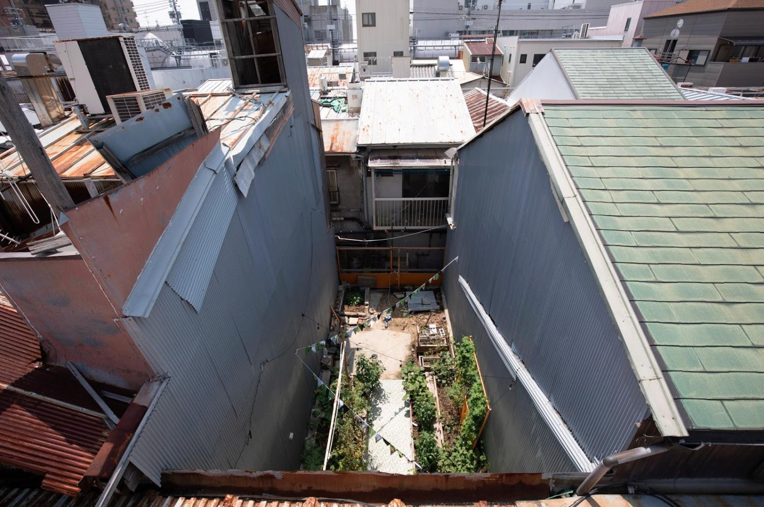 【募集終了】まちの中で野菜を育てる。神戸のアーバンファーム ツアーを開催します。-5