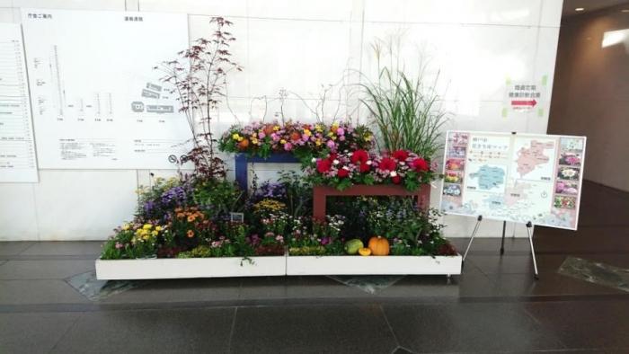 神戸の花で神戸の街を飾る「街の彩ガーデン」-AutumnVersion-登場!!-1