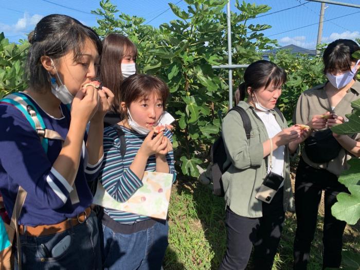 「ノーギョ・ギョギョ・ギョギョーラボラトリーズ」参加大学生が考案した「神戸いちじくチャツネ」販売会を開催します-3